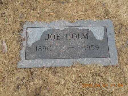 HOLM, JOE - Marquette County, Michigan | JOE HOLM - Michigan Gravestone Photos