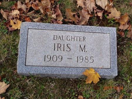 WHITE HOWELL, IRIS M. - Marquette County, Michigan   IRIS M. WHITE HOWELL - Michigan Gravestone Photos