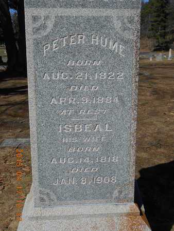 HUME, PETER - Marquette County, Michigan | PETER HUME - Michigan Gravestone Photos