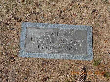 IRELAND, ROSE U. - Marquette County, Michigan   ROSE U. IRELAND - Michigan Gravestone Photos