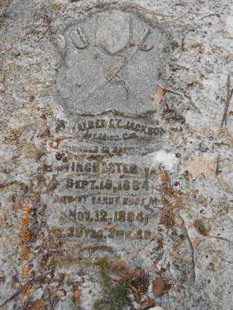 JACKSON, ALBERT T. - Marquette County, Michigan | ALBERT T. JACKSON - Michigan Gravestone Photos