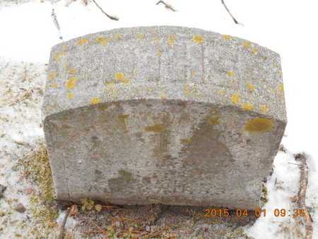 JACKSON, HANNAH - Marquette County, Michigan | HANNAH JACKSON - Michigan Gravestone Photos