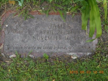 JAMES, BARBARA - Marquette County, Michigan | BARBARA JAMES - Michigan Gravestone Photos