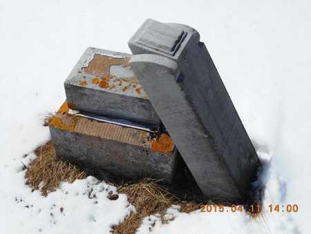 JANSSON, GUSTAF BILDER - Marquette County, Michigan | GUSTAF BILDER JANSSON - Michigan Gravestone Photos
