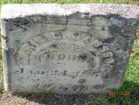 JANSSON, MARIA C. - Marquette County, Michigan | MARIA C. JANSSON - Michigan Gravestone Photos