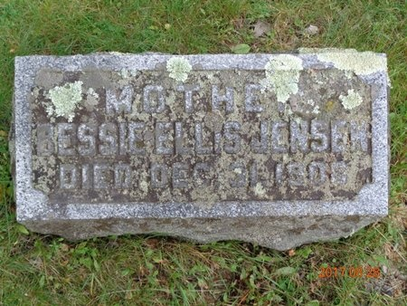 JENSEN, BESSIE - Marquette County, Michigan | BESSIE JENSEN - Michigan Gravestone Photos