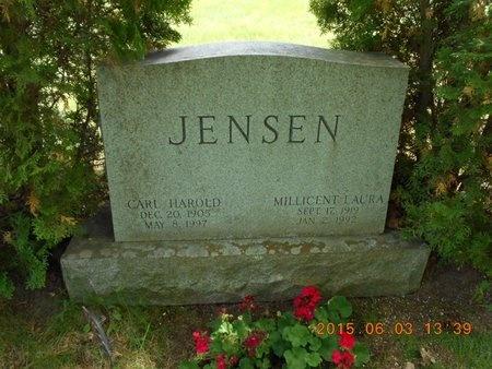 JENSEN, CARL HAROLD - Marquette County, Michigan | CARL HAROLD JENSEN - Michigan Gravestone Photos