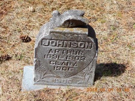 JOHNSON, CLARA - Marquette County, Michigan | CLARA JOHNSON - Michigan Gravestone Photos