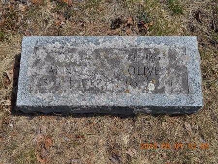 JOHNSON, OLIVER - Marquette County, Michigan | OLIVER JOHNSON - Michigan Gravestone Photos