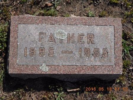 JOHNSON, ALBERT - Marquette County, Michigan | ALBERT JOHNSON - Michigan Gravestone Photos