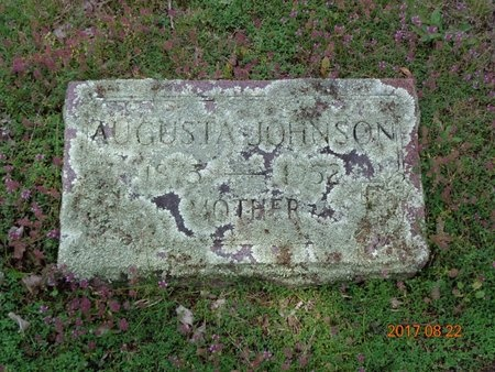 JOHNSON, AUGUSTA - Marquette County, Michigan | AUGUSTA JOHNSON - Michigan Gravestone Photos
