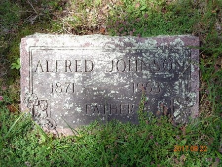JOHNSON, ALFRED - Marquette County, Michigan | ALFRED JOHNSON - Michigan Gravestone Photos