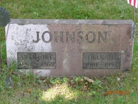JOHNSON, DIANA B. - Marquette County, Michigan | DIANA B. JOHNSON - Michigan Gravestone Photos