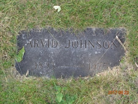 JOHNSON, ARVID - Marquette County, Michigan | ARVID JOHNSON - Michigan Gravestone Photos