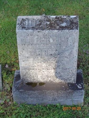JOHNSON, SIGNE - Marquette County, Michigan | SIGNE JOHNSON - Michigan Gravestone Photos