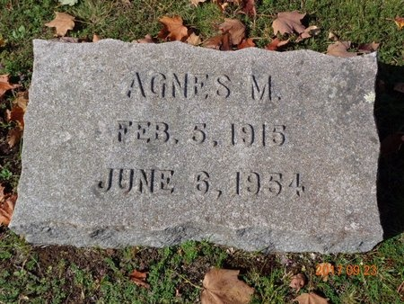 JOHNSON, AGNES M. - Marquette County, Michigan | AGNES M. JOHNSON - Michigan Gravestone Photos