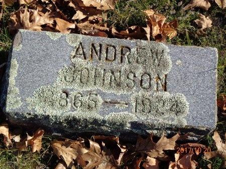 JOHNSON, ANDREW - Marquette County, Michigan | ANDREW JOHNSON - Michigan Gravestone Photos