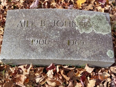 JOHNSON, AILE B. - Marquette County, Michigan | AILE B. JOHNSON - Michigan Gravestone Photos