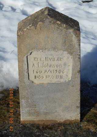 JOHNSON, A.I. - Marquette County, Michigan | A.I. JOHNSON - Michigan Gravestone Photos