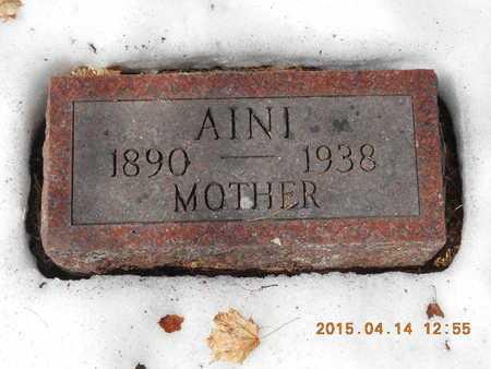 JOHNSON, AINI - Marquette County, Michigan   AINI JOHNSON - Michigan Gravestone Photos