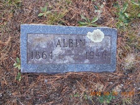 JOHNSON, ALBIN - Marquette County, Michigan | ALBIN JOHNSON - Michigan Gravestone Photos