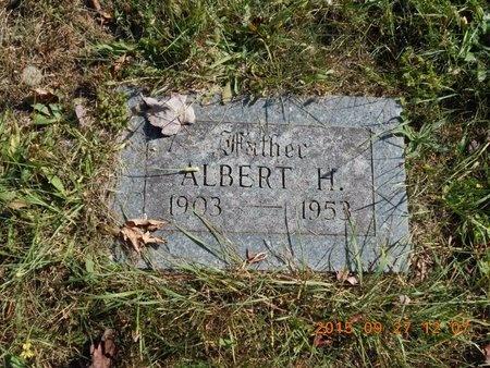 JOHNSON, ALBERT H. - Marquette County, Michigan | ALBERT H. JOHNSON - Michigan Gravestone Photos