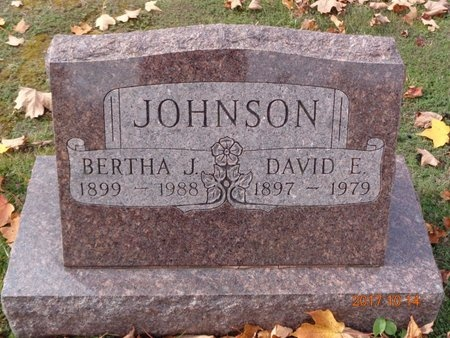 JOHNSON, DAVID E. - Marquette County, Michigan | DAVID E. JOHNSON - Michigan Gravestone Photos