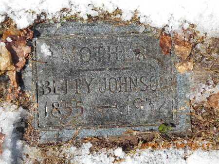 JOHNSON, BETTY - Marquette County, Michigan | BETTY JOHNSON - Michigan Gravestone Photos