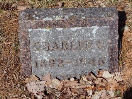 JOHNSON, CHARLES C. - Marquette County, Michigan   CHARLES C. JOHNSON - Michigan Gravestone Photos