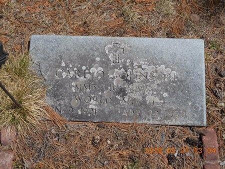 JOHNSON, CARL O. - Marquette County, Michigan | CARL O. JOHNSON - Michigan Gravestone Photos