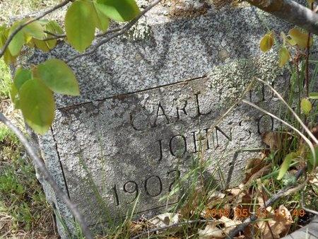 JOHNSON, CARL THEO - Marquette County, Michigan | CARL THEO JOHNSON - Michigan Gravestone Photos
