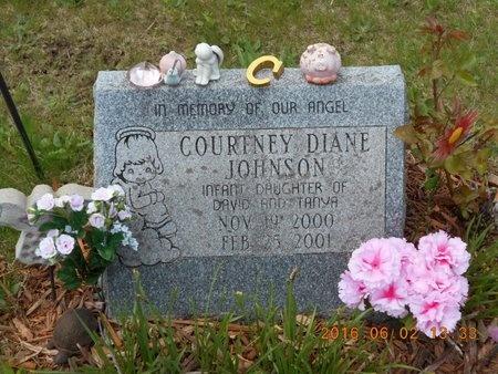 JOHNSON, COURTNEY DIANE - Marquette County, Michigan | COURTNEY DIANE JOHNSON - Michigan Gravestone Photos
