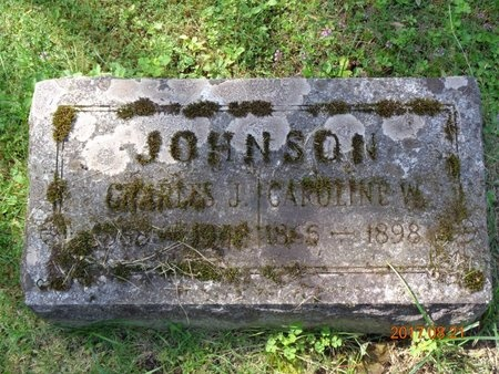 JOHNSON, CHARLES - Marquette County, Michigan | CHARLES JOHNSON - Michigan Gravestone Photos