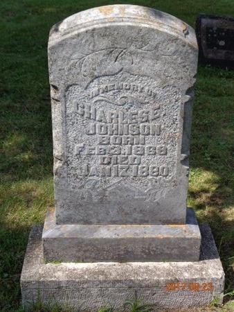 JOHNSON, CHARLES E. - Marquette County, Michigan | CHARLES E. JOHNSON - Michigan Gravestone Photos