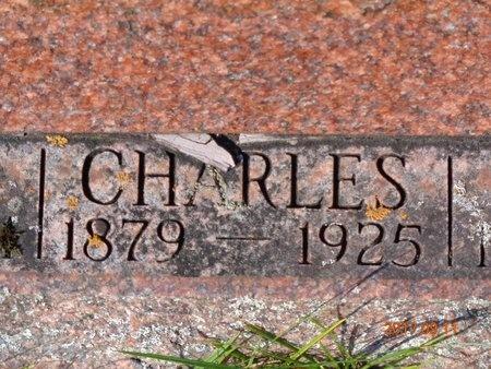 JOHNSON, CHARLES - Marquette County, Michigan | CHARLES JOHNSON - Michigan Gravestone Photos