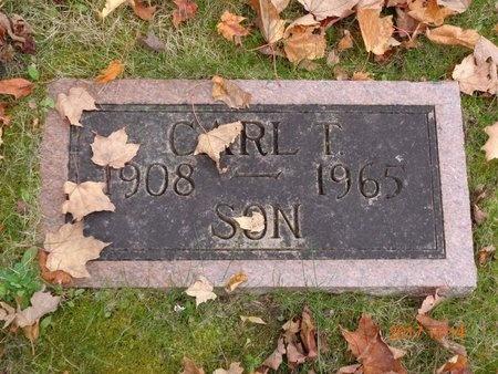 JOHNSON, CARL T. - Marquette County, Michigan | CARL T. JOHNSON - Michigan Gravestone Photos