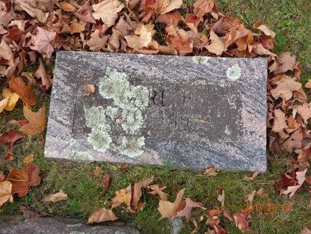 JOHNSON, CARL P. - Marquette County, Michigan | CARL P. JOHNSON - Michigan Gravestone Photos