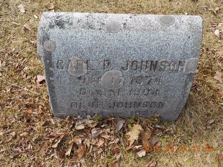 JOHNSON, CARL P. - Marquette County, Michigan   CARL P. JOHNSON - Michigan Gravestone Photos