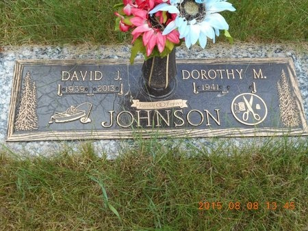 JOHNSON, DAVID J. - Marquette County, Michigan | DAVID J. JOHNSON - Michigan Gravestone Photos