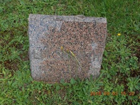 JOHNSON, ELLSWORTH - Marquette County, Michigan | ELLSWORTH JOHNSON - Michigan Gravestone Photos