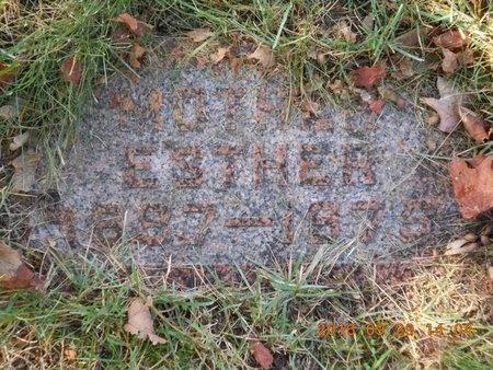 JOHNSON, ESTHER - Marquette County, Michigan   ESTHER JOHNSON - Michigan Gravestone Photos