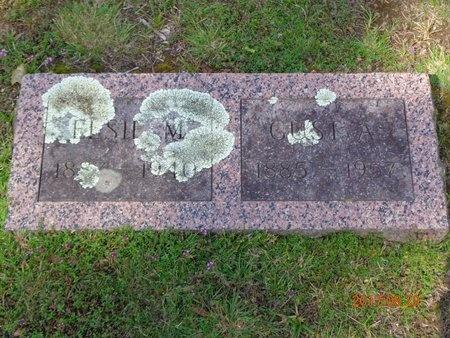 JOHNSON, ELSIE M. - Marquette County, Michigan | ELSIE M. JOHNSON - Michigan Gravestone Photos