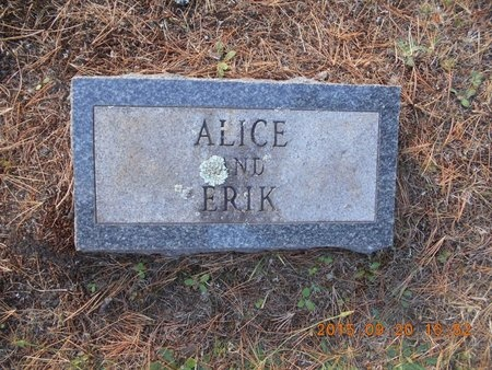 JOHNSON, ALICE S. - Marquette County, Michigan | ALICE S. JOHNSON - Michigan Gravestone Photos