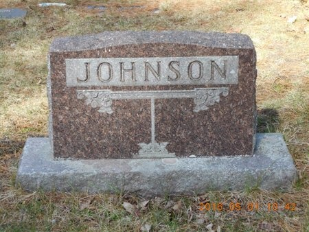 JOHNSON, FAMILY - Marquette County, Michigan | FAMILY JOHNSON - Michigan Gravestone Photos