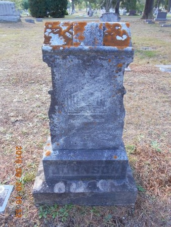 JOHNSON, FAMILY - Marquette County, Michigan | FAMILY JOHNSON - Michigan Gravestone Photos