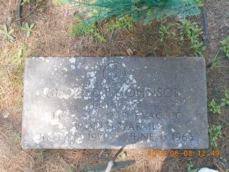 JOHNSON, GEORGE BEN - Marquette County, Michigan | GEORGE BEN JOHNSON - Michigan Gravestone Photos