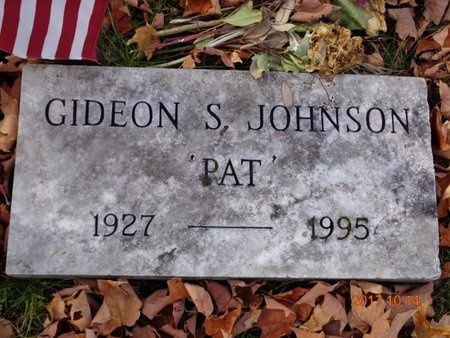 JOHNSON, GIDEON S. - Marquette County, Michigan | GIDEON S. JOHNSON - Michigan Gravestone Photos