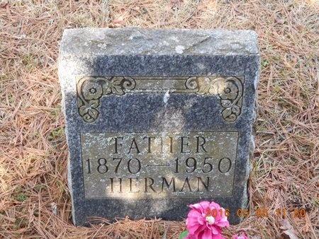 JOHNSON, HERMAN - Marquette County, Michigan | HERMAN JOHNSON - Michigan Gravestone Photos