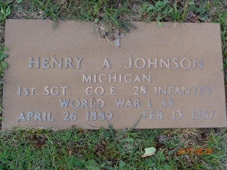 JOHNSON, HENRY A. - Marquette County, Michigan | HENRY A. JOHNSON - Michigan Gravestone Photos