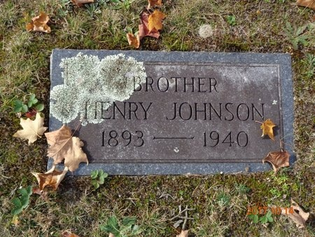 JOHNSON, HENRY - Marquette County, Michigan | HENRY JOHNSON - Michigan Gravestone Photos